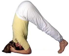 tap_tu_the_trong_chuoi_yoga_giup_chi_bach_benh_6